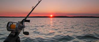 Полезные советы рыболовам
